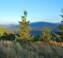 Pilsko mountain by bogfl