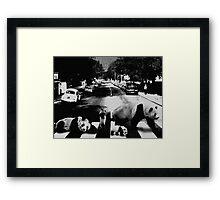 Panda Road Framed Print