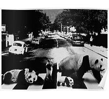 Panda Road Poster