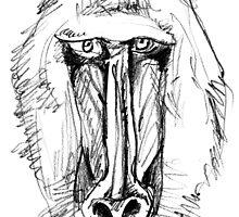 Cunning Ape by BorisBurakov