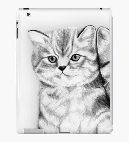 Pussy Cats iPad Case/Skin