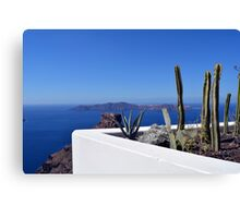 Cacti in Santorini, Greece Canvas Print