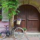 Bicycles and Door by Yair Karelic