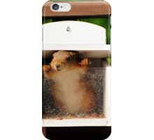 Give me food - it's empty here ... iPhone Case/Skin
