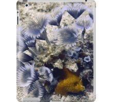 Blue Social Feather Dusters iPad Case/Skin