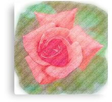 Digitally enhanced orange rose flower with green foliage background  Metal Print