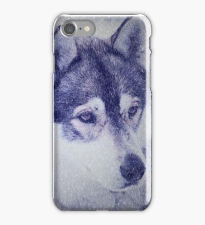 Beautiful husky dog portrait iPhone Case/Skin