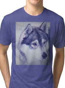 Beautiful husky dog portrait Tri-blend T-Shirt