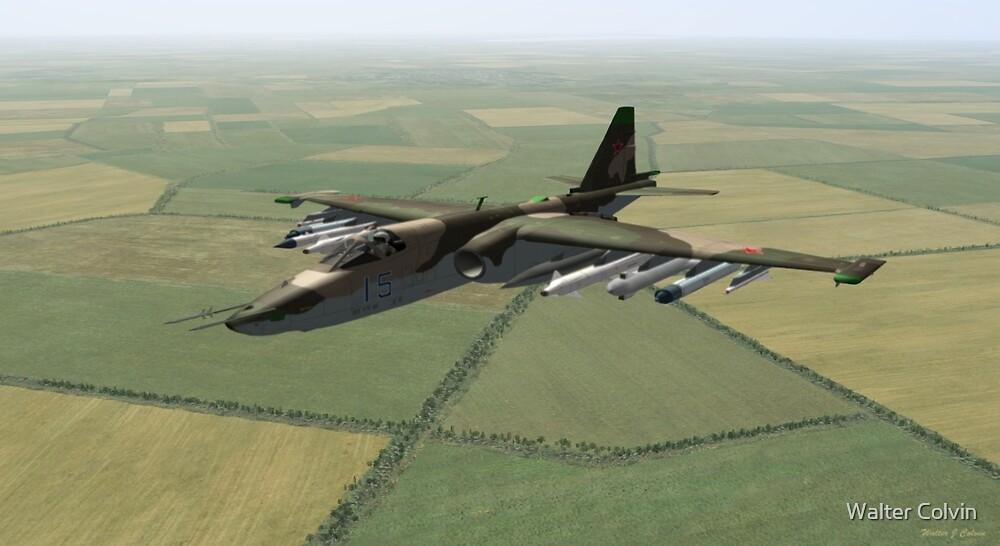 Sukhoi Su-25 Frogfoot by Walter Colvin