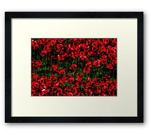 Poppy fields of remembrance for WW1 at Tower of London Framed Print