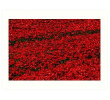 Poppy fields of remembrance for WW1 at Tower of London Art Print