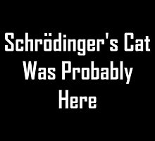Schrodinger's Cat Was Probably Here by geeknirvana