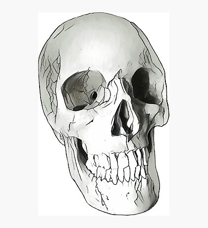 Human skull Photographic Print