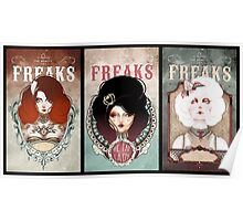 triptyque - The Beauty Freaks Poster