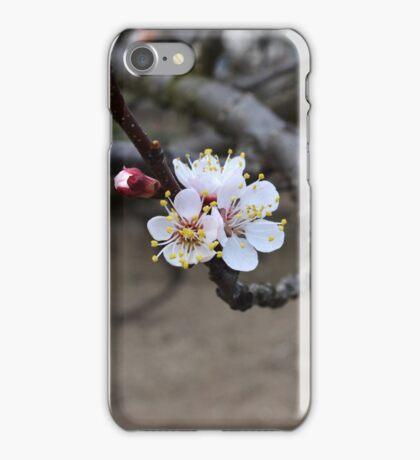 Apple flower iPhone Case/Skin