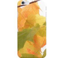 Pacific Northwest Autumn beauty iPhone Case/Skin