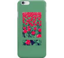 Cornell Roses iPhone Case/Skin