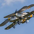 Hawker Nimrods Run in and Break by Colin Smedley