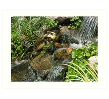 troll's face under water rocks Art Print
