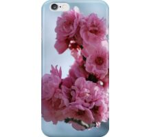 Cluster of Spring Blossum By Lorraine McCarthy iPhone Case/Skin