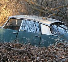 old car burried in the woods by Maureen Zaharie