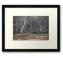 Linking Arms Framed Print