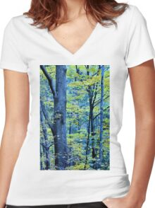 Autumn Foliage #2 Women's Fitted V-Neck T-Shirt