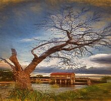 Composed Single Tree by JohnDSmith
