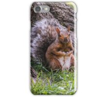 Hurry Up and Take the Photo... I Have Nuts to Gather! iPhone Case/Skin