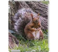 Hurry Up and Take the Photo... I Have Nuts to Gather! iPad Case/Skin