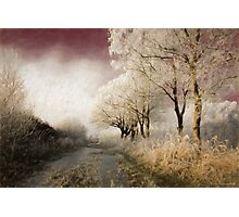Down Winter Road Photographic Print