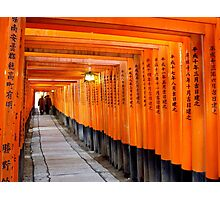 Torii Gate in Japan Photographic Print