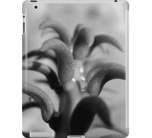 TOP VIEW OF A PRICKLY CACTUS iPad Case/Skin
