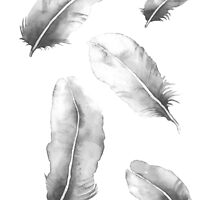 Charcoal Feathers by ThePerkySloth