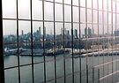 Reflecting Brooklyn by John Schneider