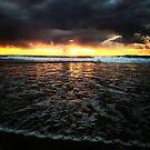 Casuarina Beach 0504 by Michael Kienhuis
