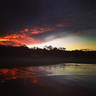 Casuarina Beach 1104 by Michael Kienhuis