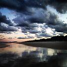 Casuarina Beach 1004 by Michael Kienhuis