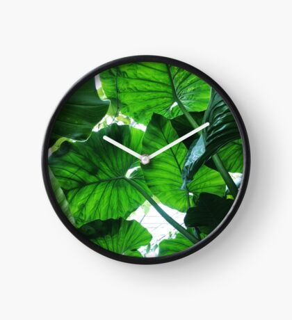 Tropical Giants Clock