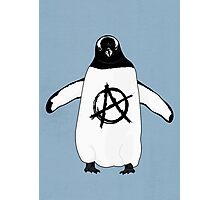 Anarchy in the Antarctic Photographic Print
