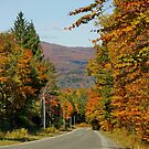 Road in Vermont New England USA by AnnDixon