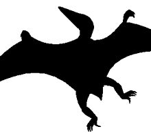 Pterodactylus Silhouette by kwg2200
