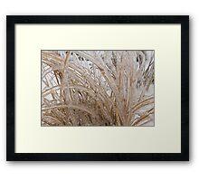Icy Grass Sculptures Framed Print