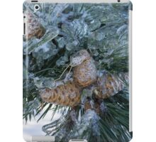 Mother Nature's Christmas Decorations - Pine Cones iPad Case/Skin