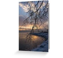 A Curtain of Frozen Branches - Ice Storm Sunrise Greeting Card