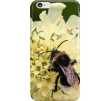 How to Bee Happy iPhone Case/Skin