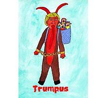 Trumpus Photographic Print