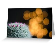Bokeh with prickles Greeting Card