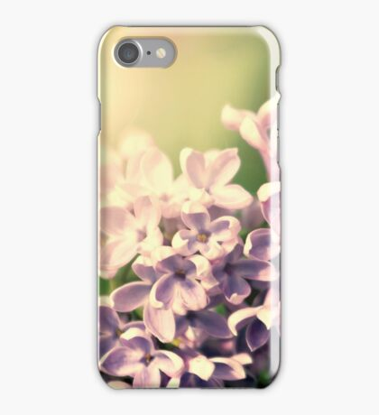 Flowers background. Pink lilac flowers iPhone Case/Skin