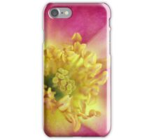 The Last Rose of Summer iPhone Case/Skin